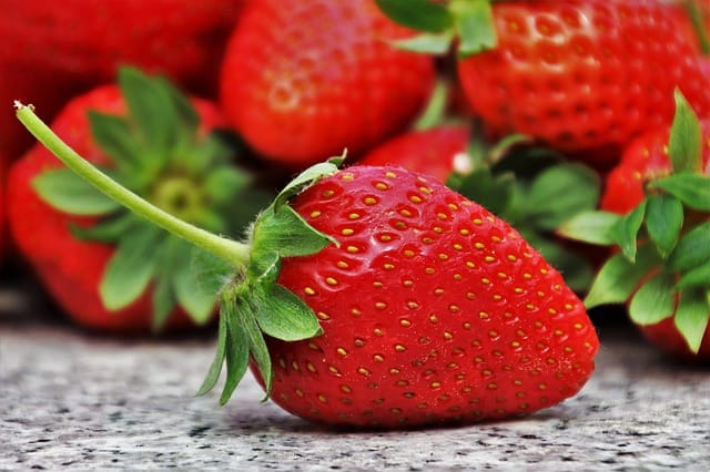 imagen de una fresa